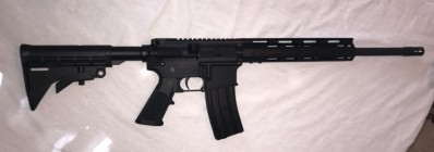 Fedarm AR-15 300AAC Blackout Carbine 16in Barrel with 10inch Free Float M-Lok Rail, 300AAC Blackout 30 Round Mag