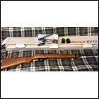 Ruger 10/22 - 50th Anniversary Standard Birch Stock Model